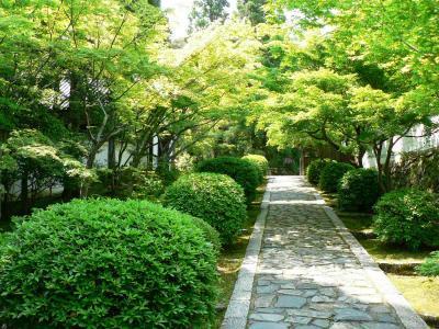 日本の旅 関西を歩く 京田辺市の一休寺(いっきゅうじ)周辺