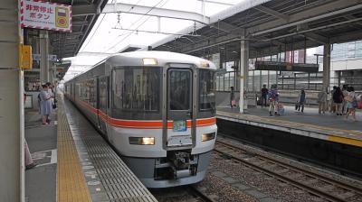 静岡出張旅行4-特急ふじかわ1号で身延へ,身延山久遠寺,身延線で甲府へ