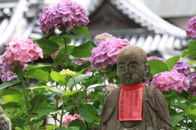 美しい矢田の山の辺で、お地蔵さんとアジサイに出会う 「矢田寺」