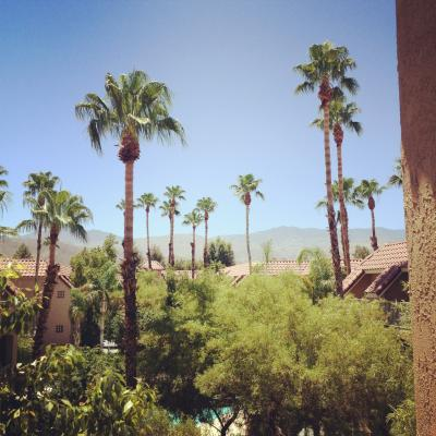Palm Springs Resort