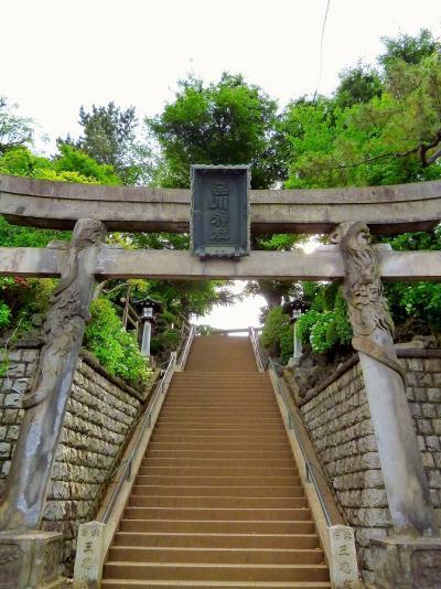 2012/06/13③ 品川神社で狛犬三昧