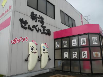 2012.07.07 新潟県新潟市