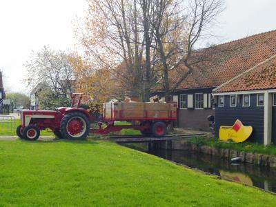 オランダに住むならこの村!マルケン