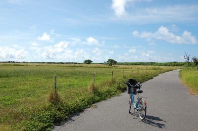 2012.7 黒島・竹富島6日間の旅① (黒島 なかた荘編)