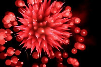岸和田港を鮮やかに彩る1500発 「第60回岸和田港祭り花火大会」