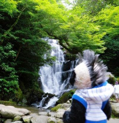 カキ氷と滝で涼を満喫