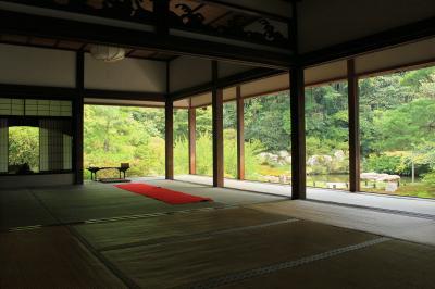 夏の京都 2 ~泉湧寺、青蓮院門跡、下鴨神社の御手洗祭~