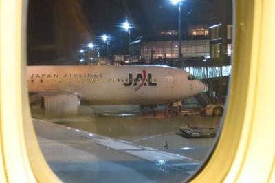 JAL パリ経由ストックホルム 往路羽田深夜発・復路成田着