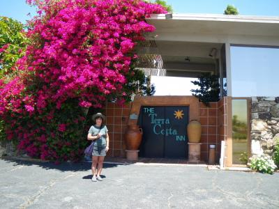 カリフォルニア大自然と温泉三昧(2012年GW)...その25「Palm Springs のThe Terra Cotta Inn」