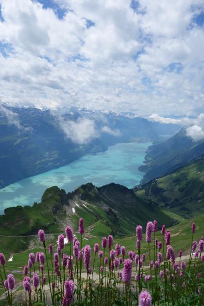 スイス/イタリア旅行2012 ③  ブリエンツ湖とブリエンツ・ロートホルン鉄道