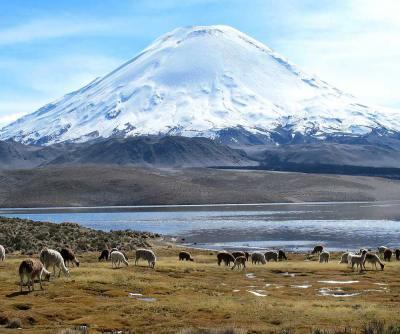 団塊夫婦の世界一周絶景の旅2012年・チリ編2ー標高4500mのラウカ国立公園の絶景