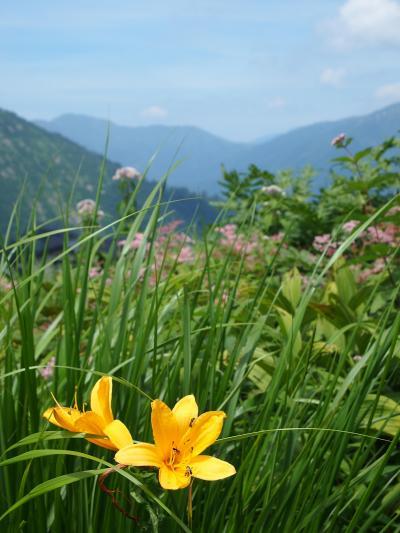 盛夏の季節、上毛高原に避暑の旅へ…【1】~谷川岳天神平天空散歩~