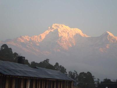 冬のネパール、アンナプルナ山麓 トレッキングとチトワン国立公園
