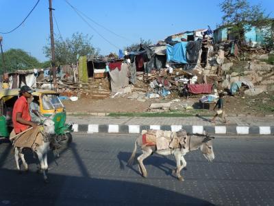 インドでびびり旅