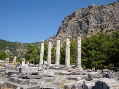 【2012年夏】トルコの旅~その2:セルチュクからプリエネ・ミレト・ディディム遺跡へ~