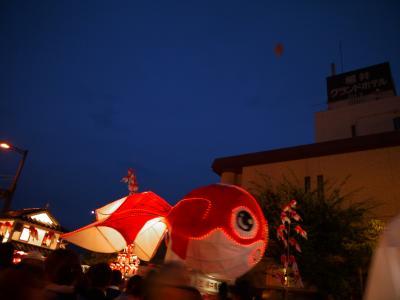 金魚のランタンがいっぱい!!柳井金魚ちょうちん祭り2012