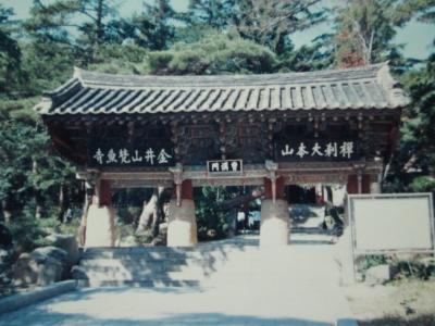 1986.9 初めての釜山