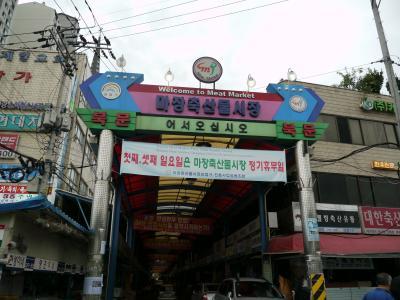 初韓国のD~リンを連れてソウル3連泊!!馬場洞焼肉横丁からeマートめぐりまで