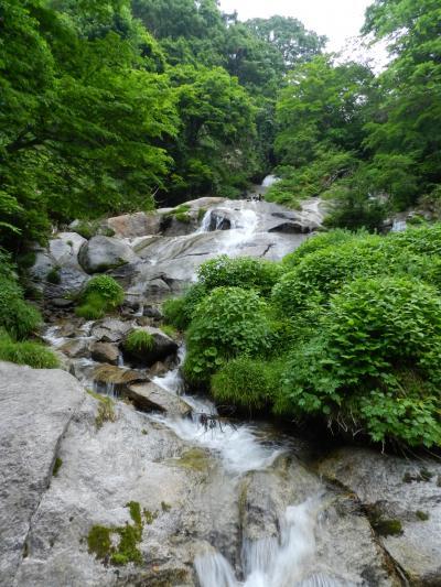 奥伊吹の『五色の滝』◆滋賀県北部の滝めぐり&山歩き≪第三章(最終章)≫
