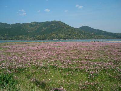 長崎一人旅 2日目(2012.4.15) 五島列島・福江島