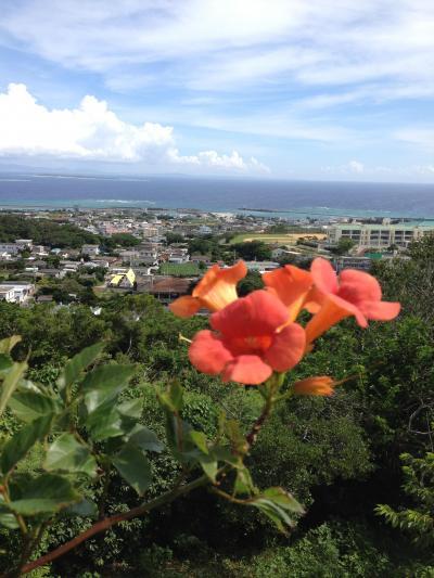 近くて遠い離島、伊江島