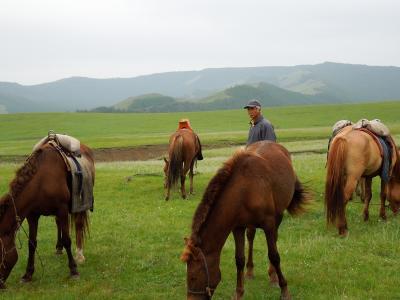 モンゴル旅行(3) 遊牧民ホームステイ 後編