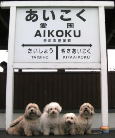 夏の北海道初めての旅 愛国~幸福