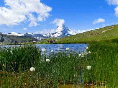 スイスハイキング2012(シュテリゼー・フリューエヒュッテ・ブラウヘルト)