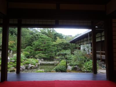 99年目の特別公開と夢窓国師庭園(2) 京都市~等持院~
