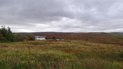 食後の散歩は・・・荒涼とした丘にヒースの花咲く、ペニストンヒルで。