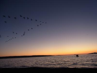 2012.9.17(月)~23(日)バンクーバー/シアトル旅行記①出発・バンクーバー半日過ごし。