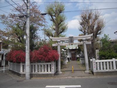 相模平塚八王子神社散歩
