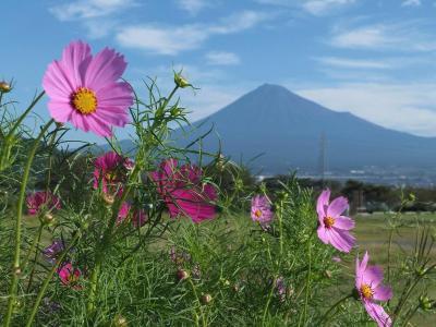自転車でウロウロ… 2012.09.26富士山三昧(富士市・沼津市)