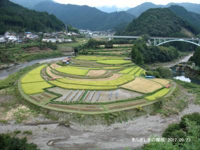巨峰村のぶどう狩りとあらぎ島の棚田を訪ねて/和歌山県・有田川町