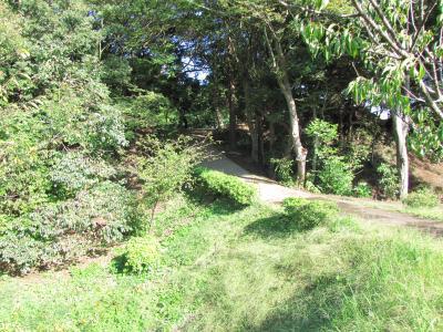 佐倉市散策(35)・・太田道灌、上杉謙信も攻めた臼井城を訪ねます。