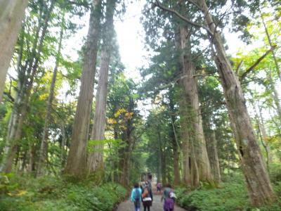 戸隠神社五社参拝と燕温泉の旅