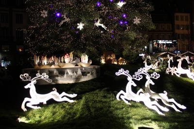 2011冬のアルザス1泊2日★2 ストラスブール