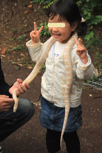 長野新幹線に乗って茶臼山動物園までレッサーパンダの赤ちゃん詣(4)レッサーパンダ以外のいろんな動物たち再び