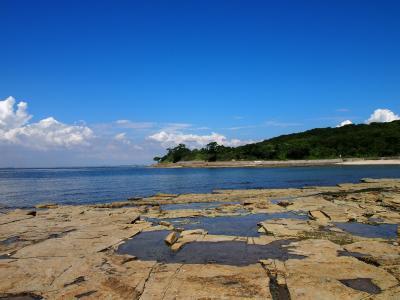 佐久島・夏の名残を求めて★西集落の白浜海岸で磯遊び♪