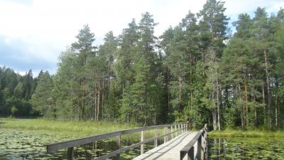 2012.8.15~8.24フィンランド・エストニア子連れ家族旅行③ 8.17 レンタカーでヌークシオ国立公園とハンコへ