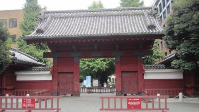 東京旅行:東京大学