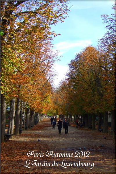 パリのお散歩 初秋 色づきはじめたリュクサンブルグ公園 Jardin du Luxembourg