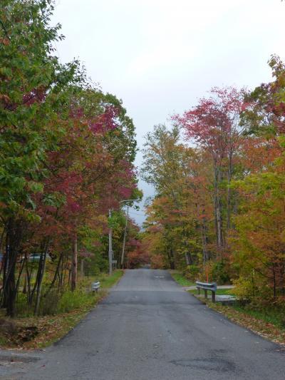東カナダ、メープルの紅葉、黄葉、褐葉クルーズの旅