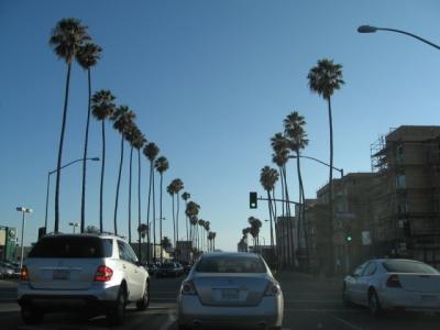 アメリカ西海岸(+メキシコ・ティファナ)とグランドキャニオン(7) ロサンゼルス