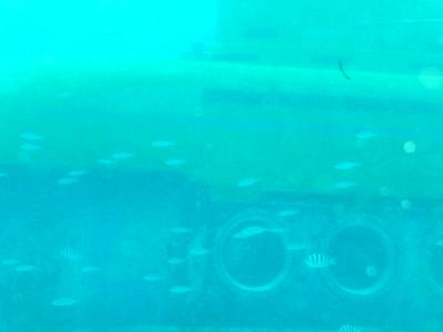 彩帆はぐれ旅 4 ダイビング編 (2012.10.02)