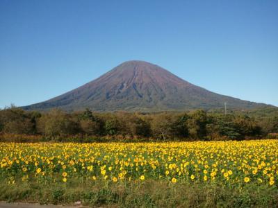 ニセコから倶知安、温泉に入り、蝦夷富士を見てきました。