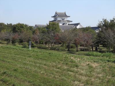 関宿城 ここは千葉県、あそこは茨城県、私たちは埼玉県から来ました