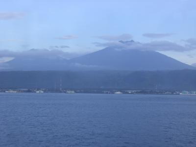 台湾・インドネシアの旅日記2010(15)バニュワンギ→ウブド(バリ島)