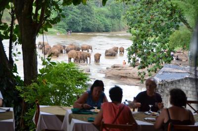 スリランカはやっぱり人気の観光地