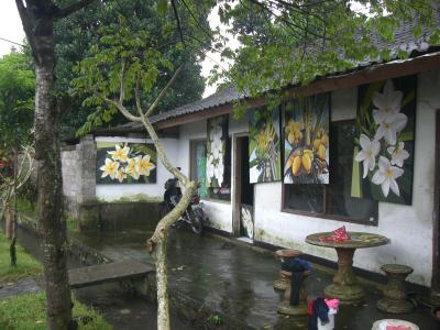 台湾・インドネシアの旅日記2010(16)ウブド二日目
